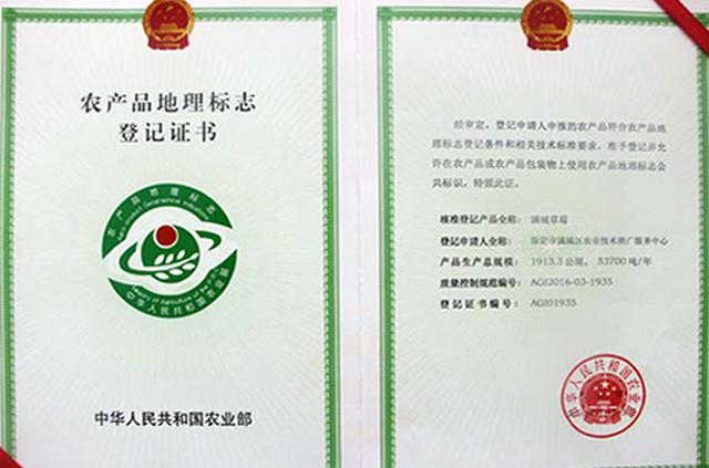 产品地理登记证书